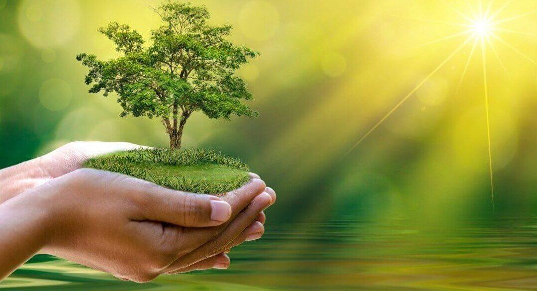 Un viitor cu zero emisii