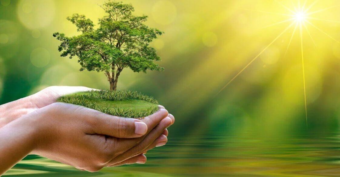 Reducerea poluarii si a emisiilor de carbon